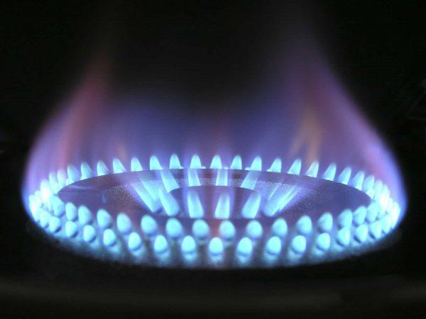 Gaskocher: Test & Empfehlungen (01/20)
