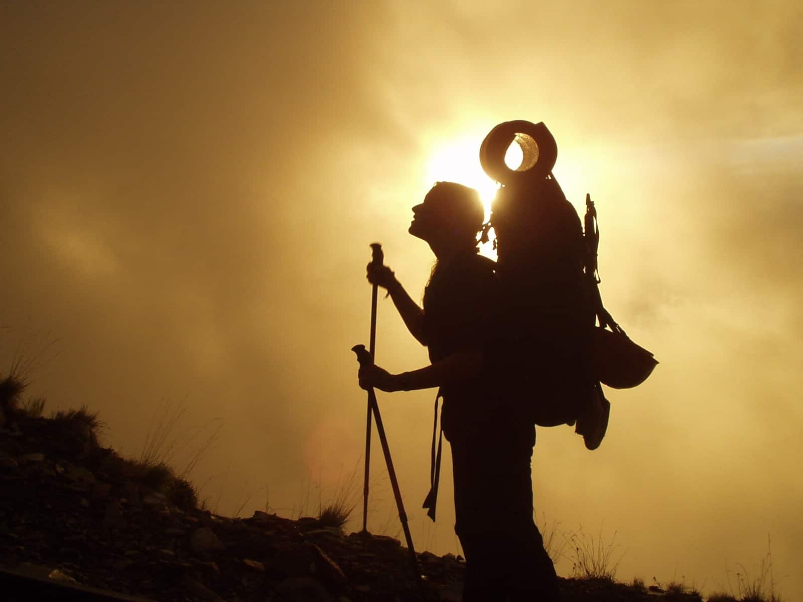 Trekkingstöcke: Test & Empfehlungen (04/21)