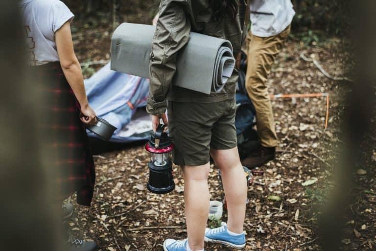 Camper stellen Zelt im Wald auf