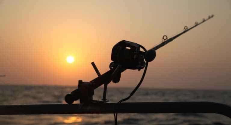 Rute vor der untergehenden Sonne