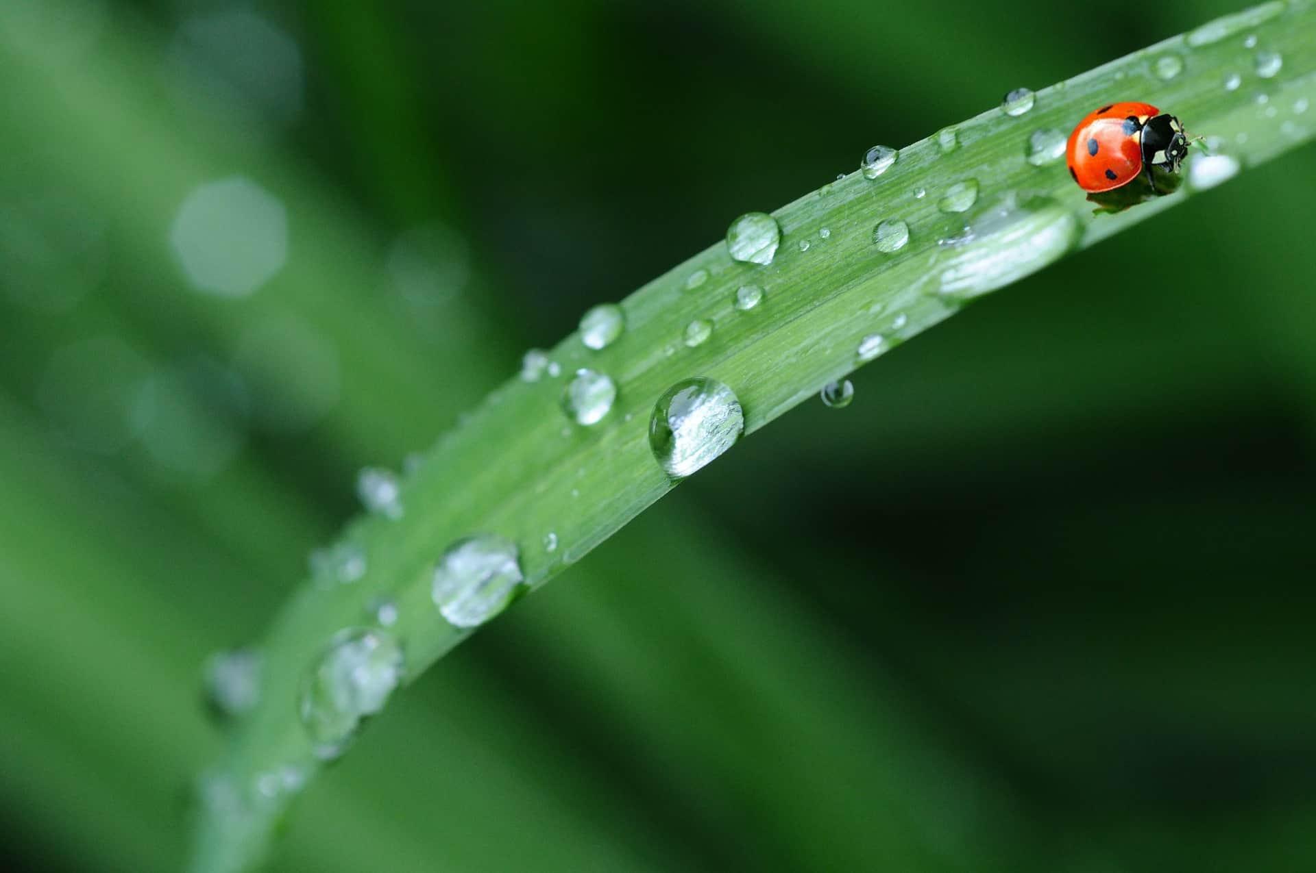 Regenjacke: Test & Empfehlungen (10/20)