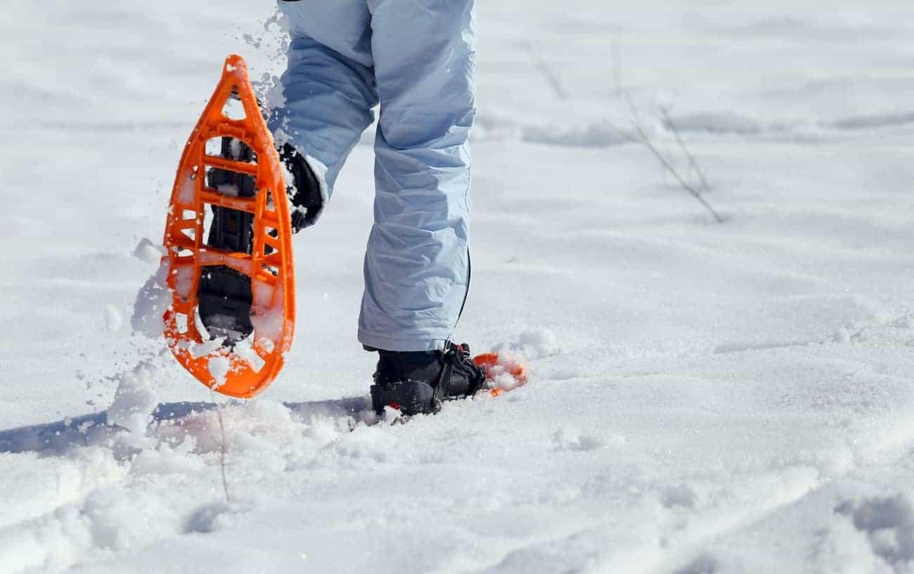 Schneeschuh: Test & Empfehlungen (04/20)