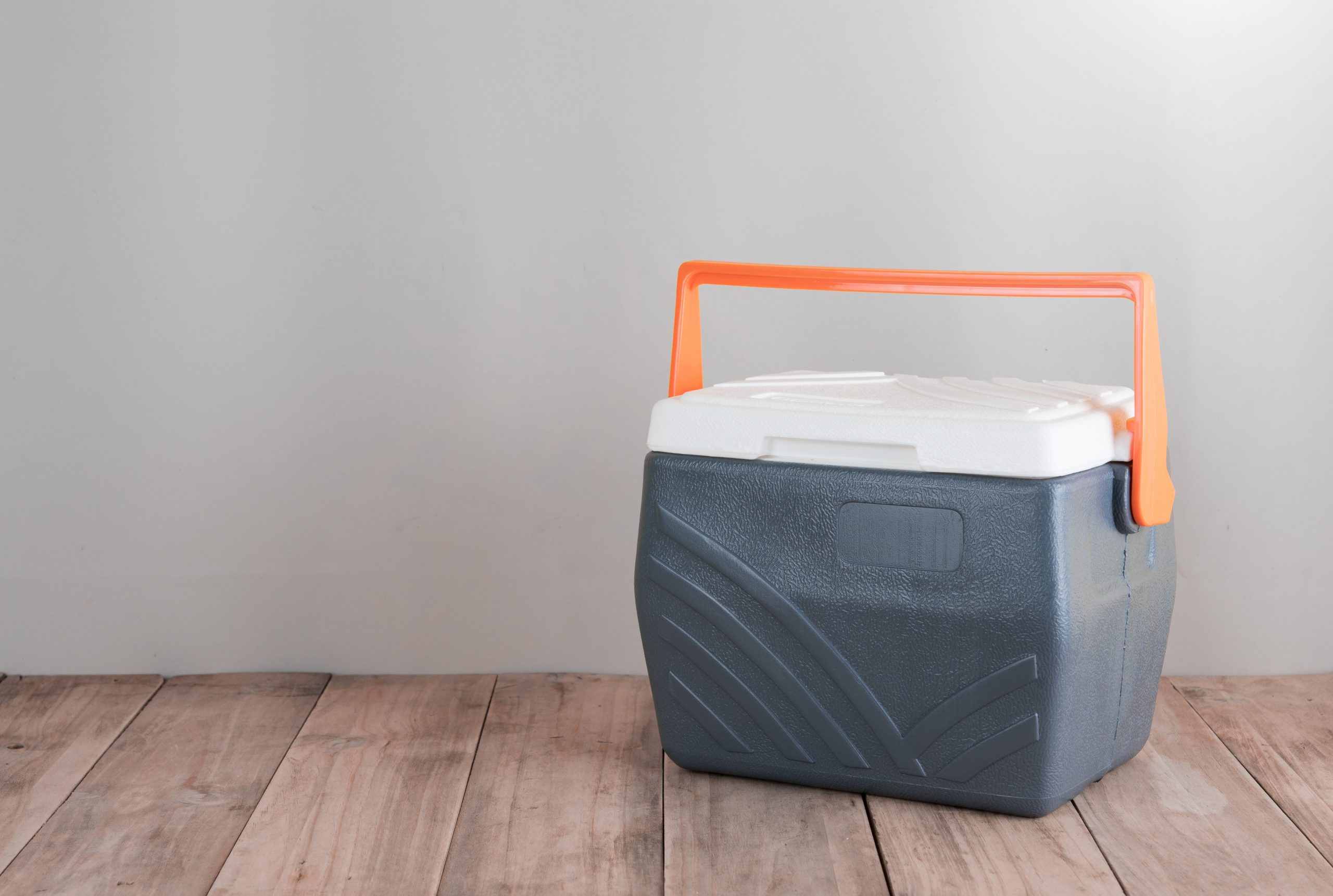Kühlbox 12V: Test & Empfehlungen (12/20)