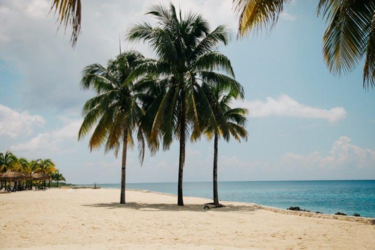 Windschutz für den Strand-1