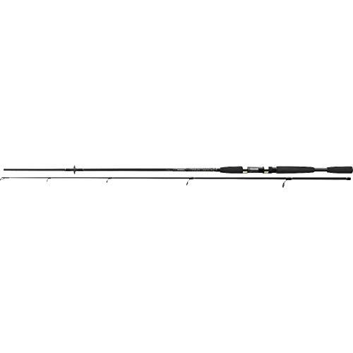 Cormoran i-Cor Black 2.40m 10-40g Spinnrute